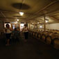 wine tour israel